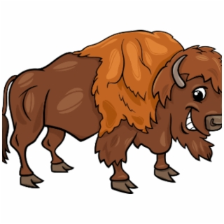 Yak clipart female buffalo. Png images transparent vippng