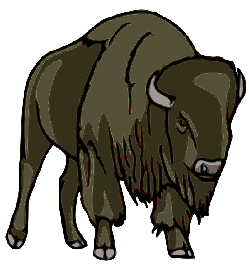Cartoon drawing at getdrawings. Buffalo clipart yak
