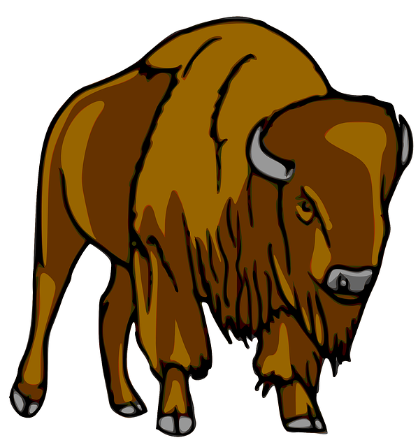 collection of cartoon. Bison clipart kawaii