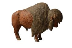 Seating with style chairs. Bison clipart muskox