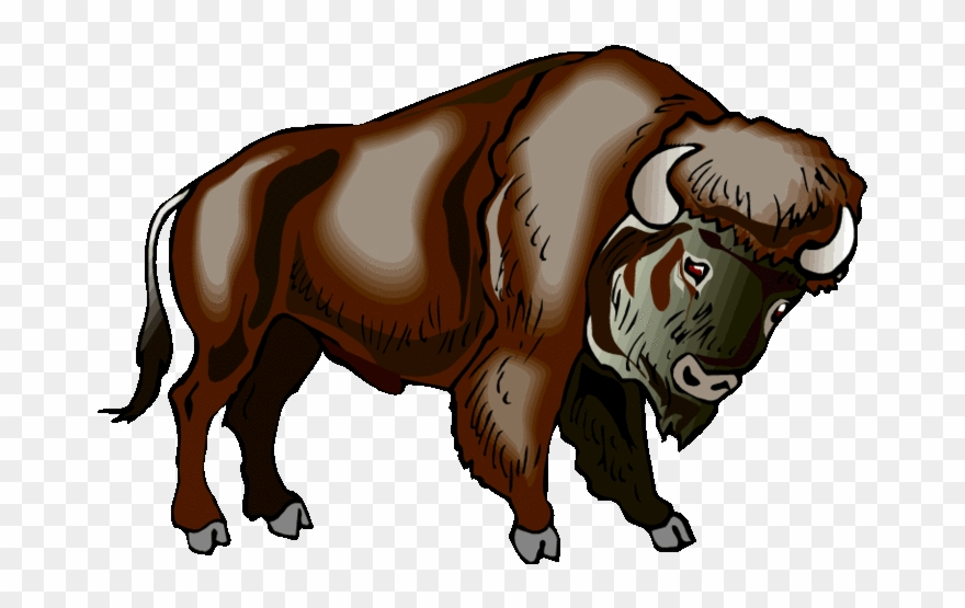 . Bison clipart native american buffalo