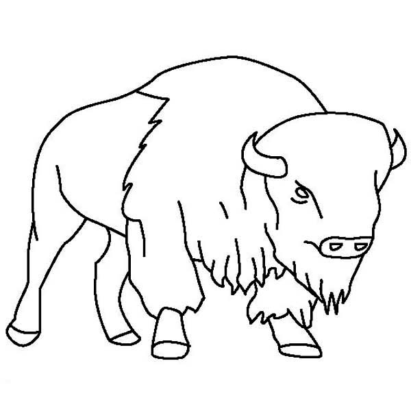 Bison clipart simple. Skull drawing at getdrawings