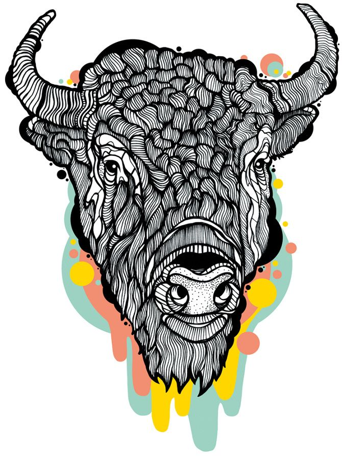Head digital illustration by. Bison clipart sketches