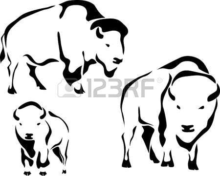 best buffalo and. Bison clipart sketches