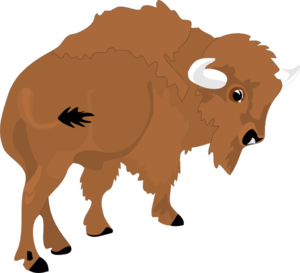 Clip art at clker. Bison clipart transparent