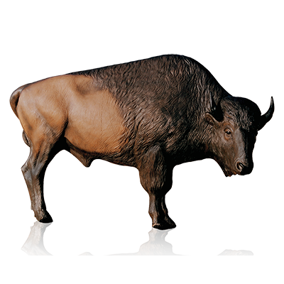 Png mart. Bison clipart transparent