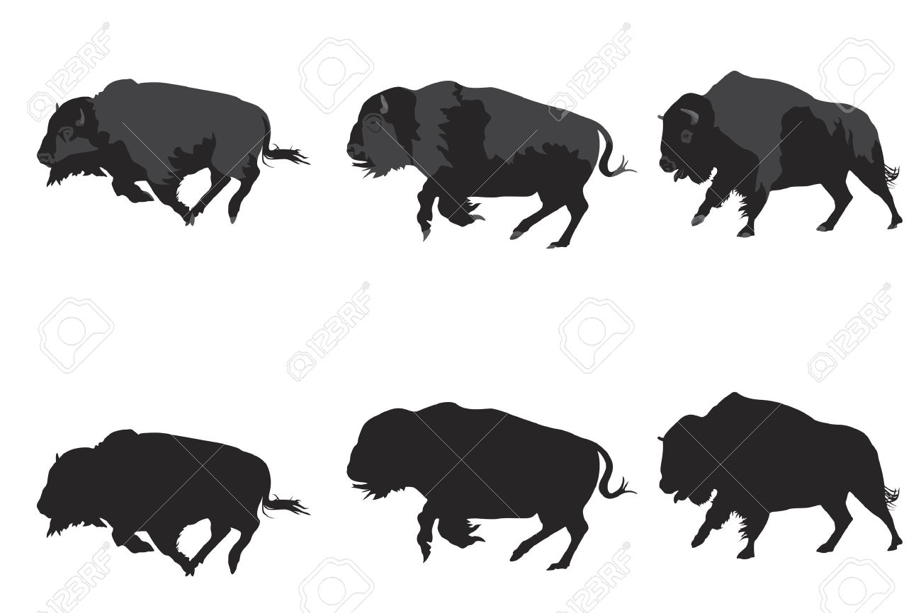 Bison clipart vector. Running buffalo pencil and