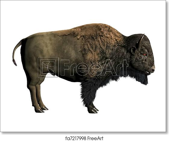 Free art print of. Bison clipart white background