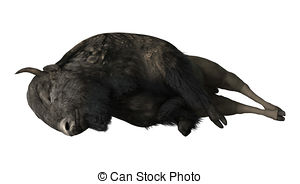 Bison clipart white background. Dead pencil and in