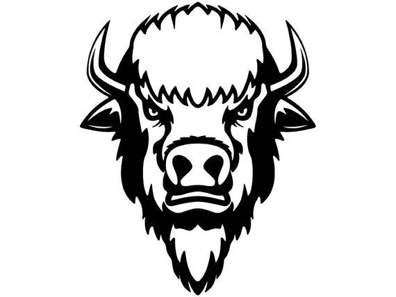 Head animal wildlife mascot. Bison clipart wild buffalo