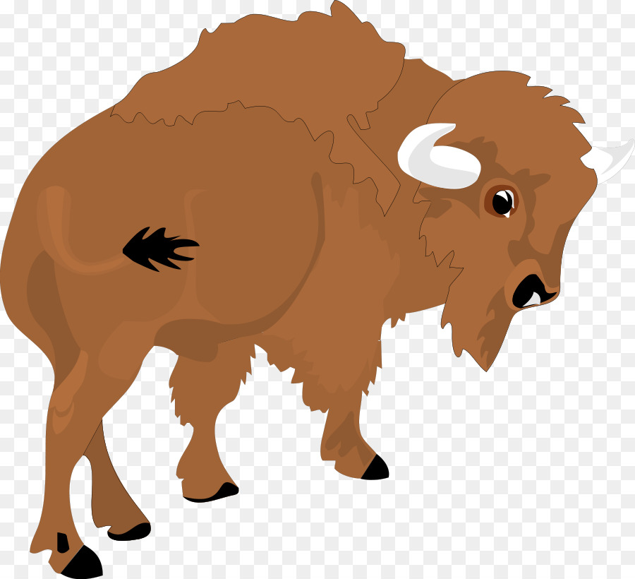 Yak clipart bison. Cartoon sheep ox transparent