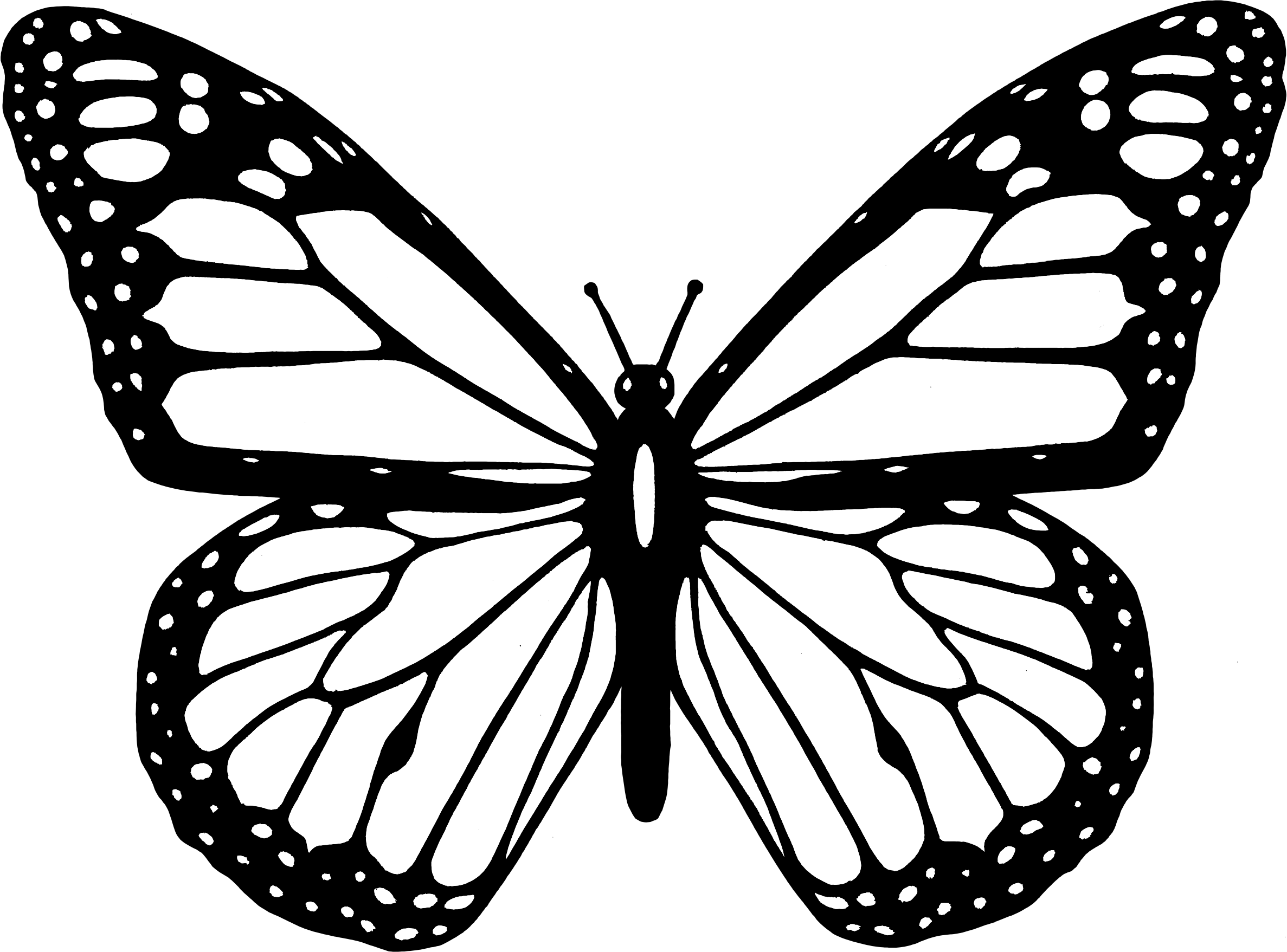Clipart butterfly. Black and white big