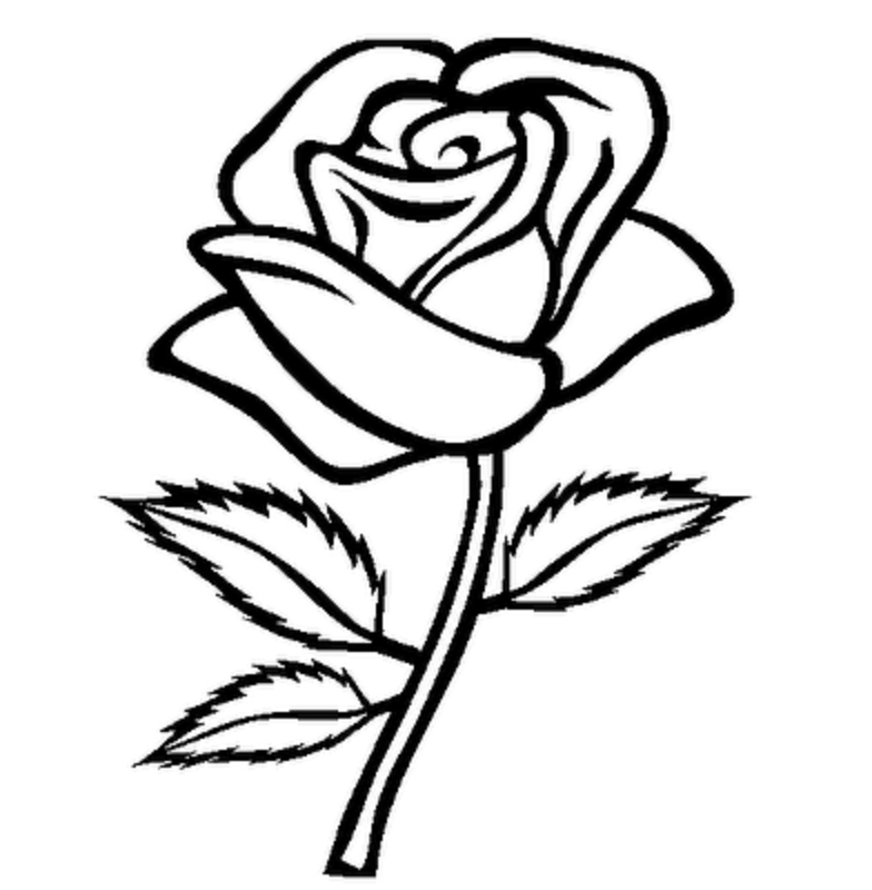 Rose clipart template. Flower stem black and