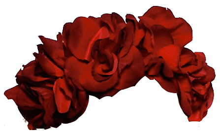 red for free. Black flower crown png