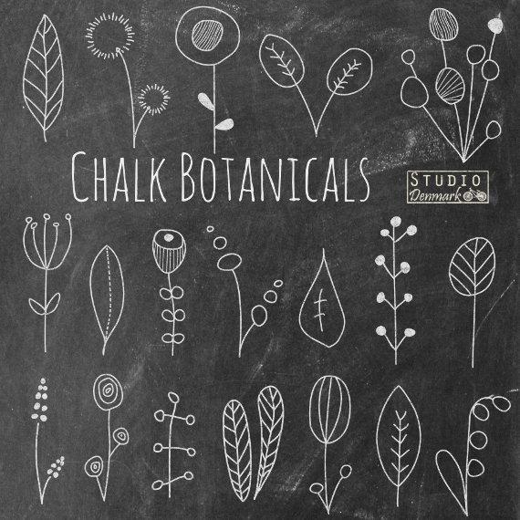 Flower doodles chalk botanicals. Chalkboard clipart easy