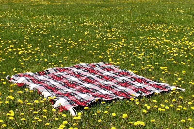 Blanket clipart picnic mat. In field by loopyker