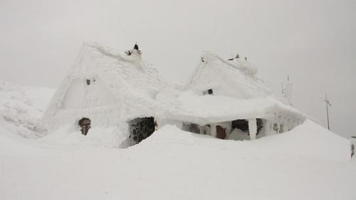 My weblog hurricane vs. Blizzard clipart ice storm