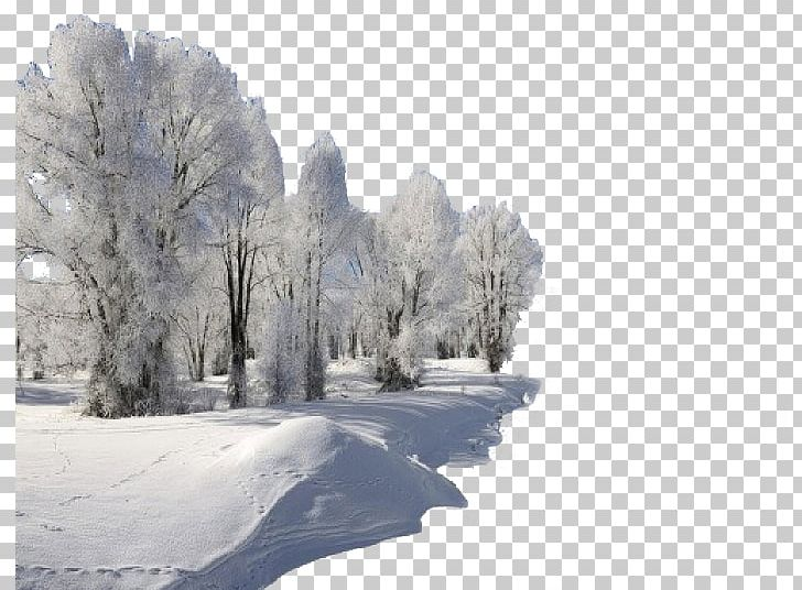 Blizzard clipart january. High definition television video