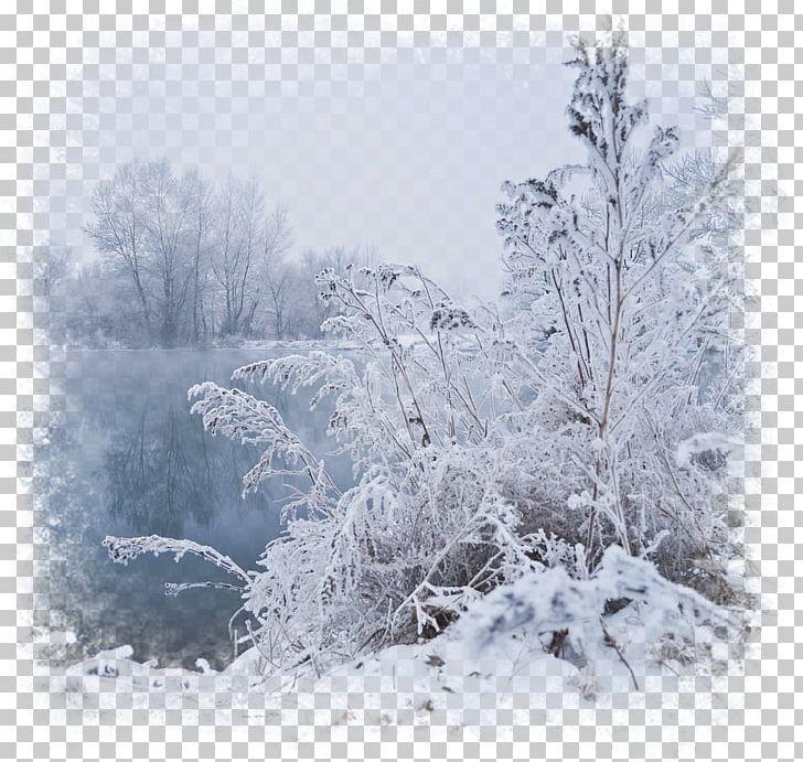 Blizzard clipart scene. Winter fog desktop png