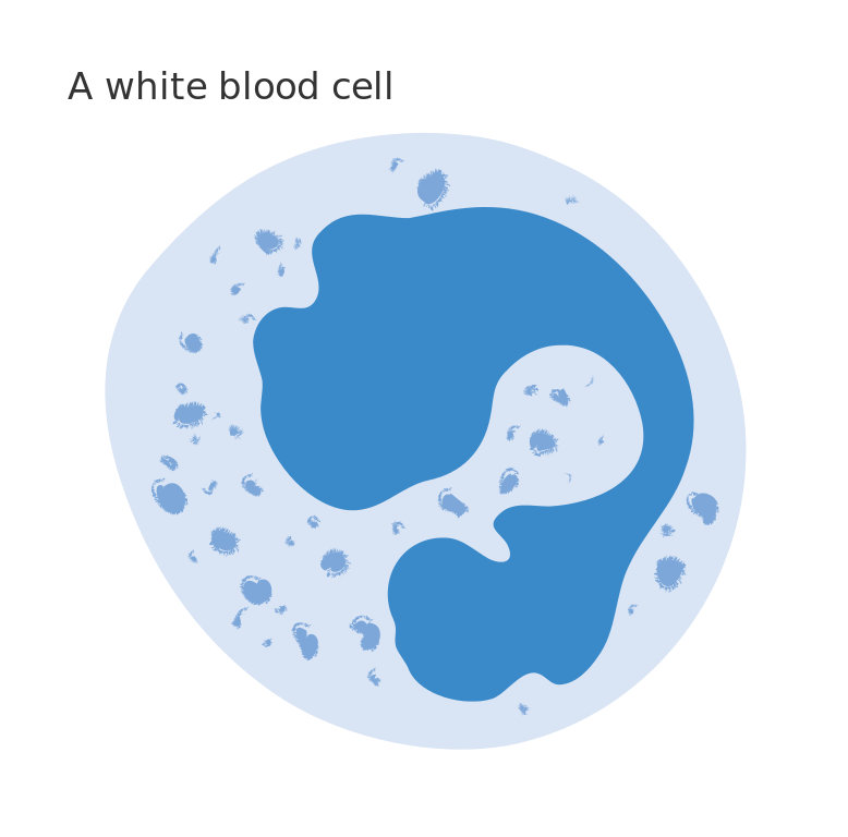 Blood clipart blood cell. Cells steemit