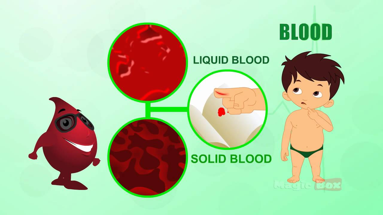 Body parts in tamil. Blood clipart human blood
