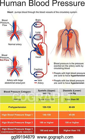 Vector art pressure eps. Blood clipart human blood