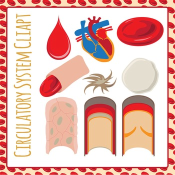 Circulatory system clip art. Blood clipart human blood