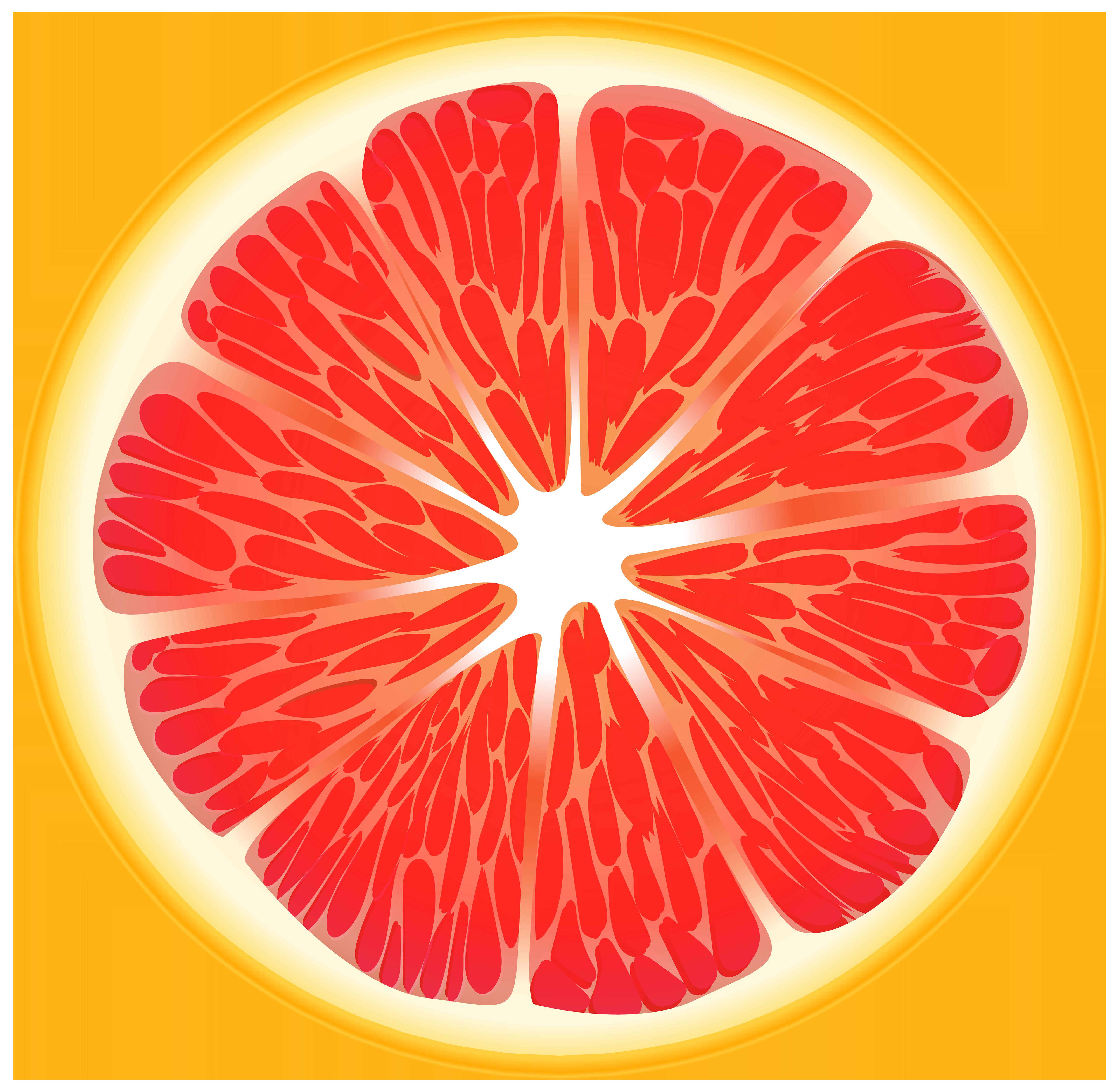 Red slice clip art. Blood orange png
