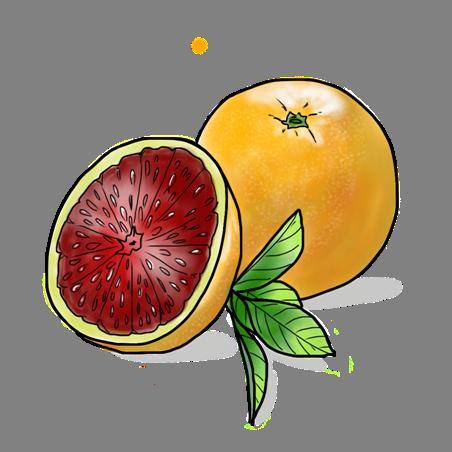 blood orange png