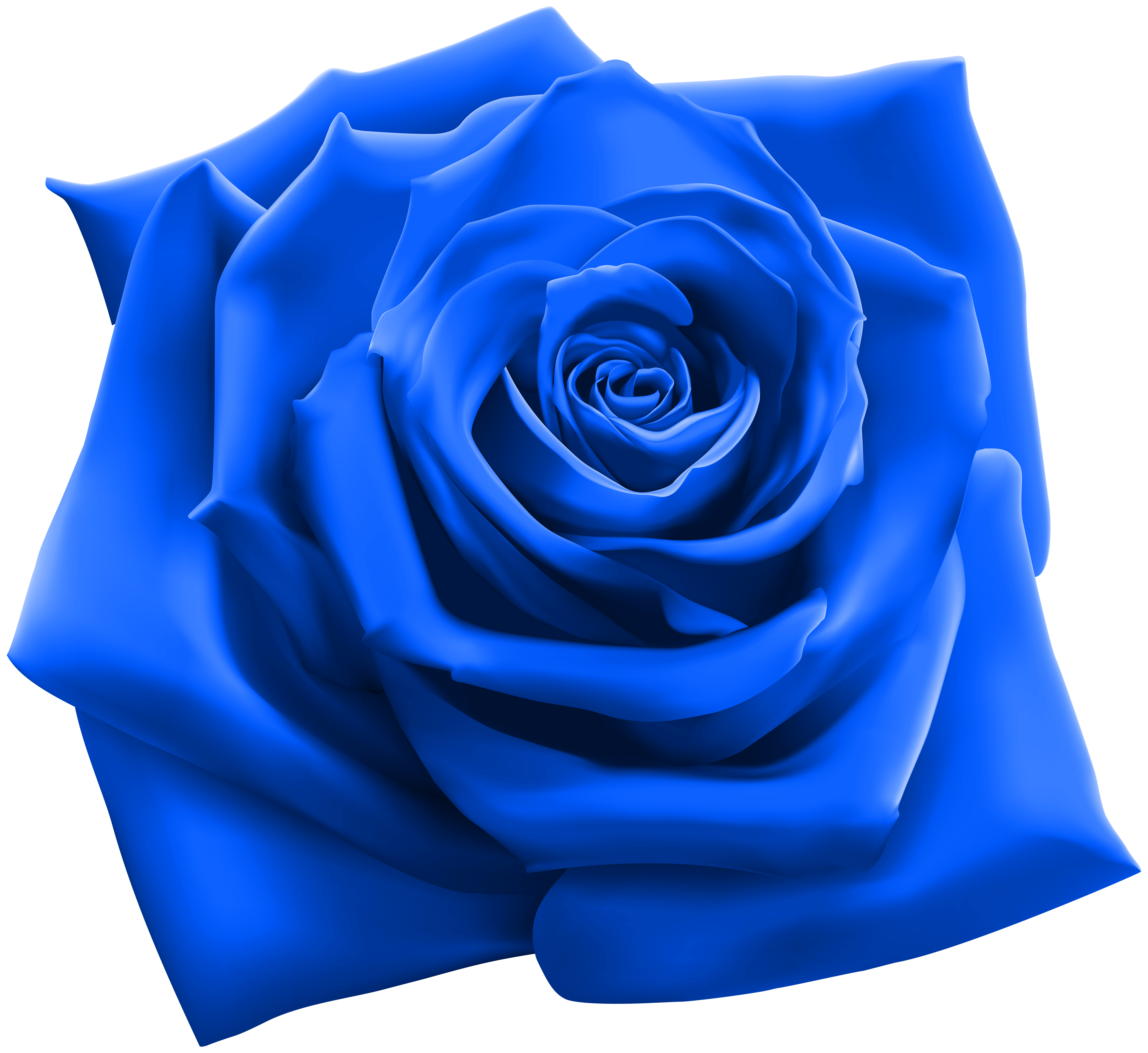 Blue clipart. Rose png image gallery