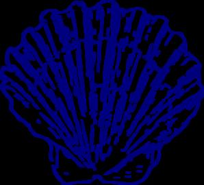 blue clipart seashell