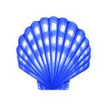 Scallop shell stock panda. Blue clipart seashell