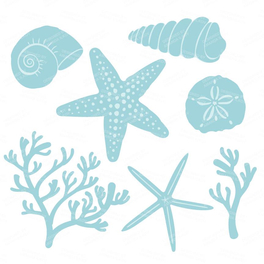 Mint mandy art market. Blue clipart seashell