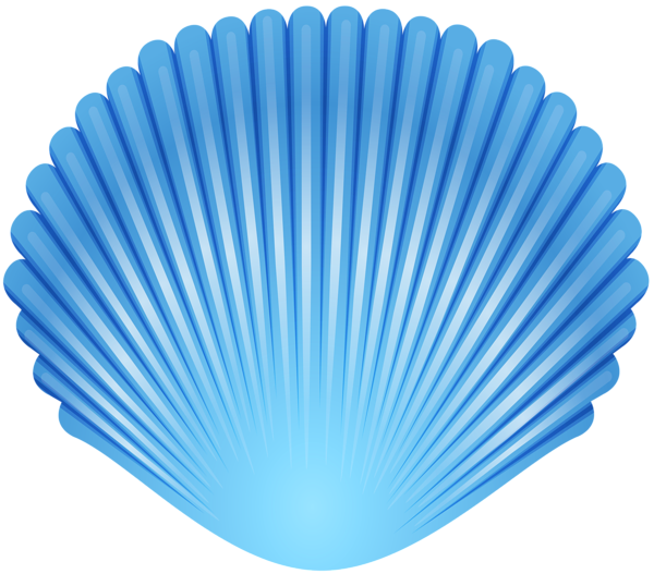 Shell clipart blue sea. Seashell transparent png clip