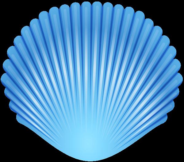 Blue clipart seashell. Transparent png clip art