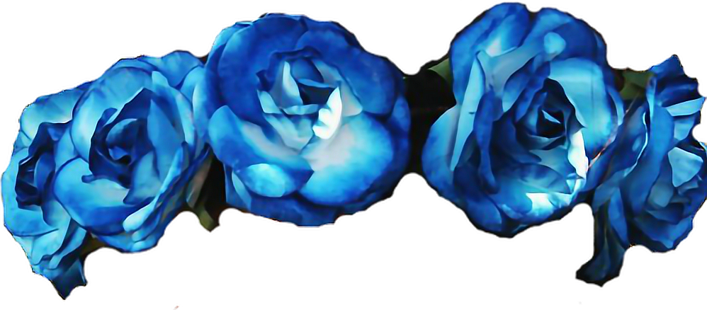 Blue flower crown png. Flowers roses flowercrown diadem