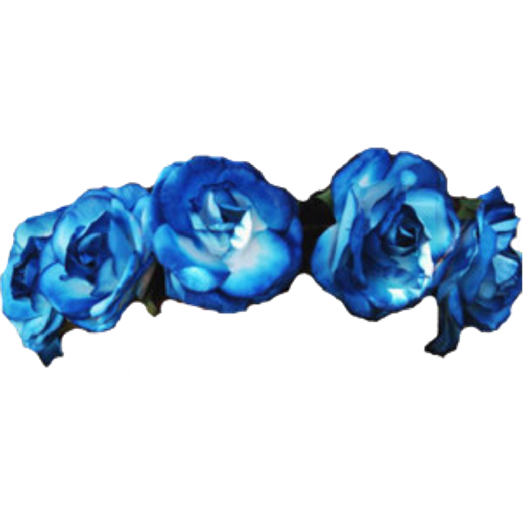 Blue flower crown png.  transparent for free