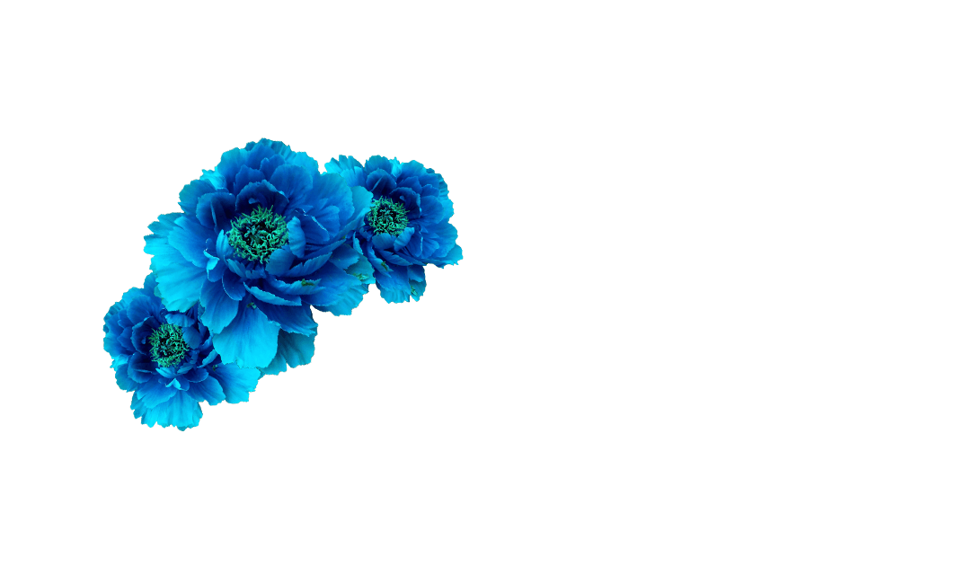 Wreath aqua transprent free. Blue flower crown png