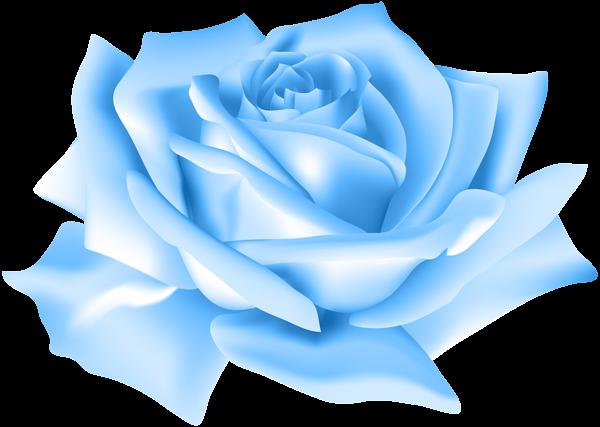 Rose clip art image. Blue flower png