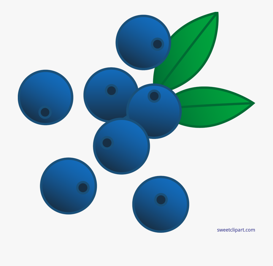 Blueberry clipart blueberry bush. Berries blueberries clip art