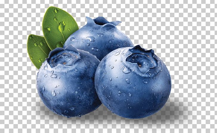 Blueberry clipart antioxidant. Bilberry fruit seed png