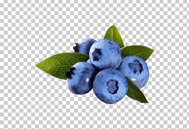Blueberry clipart antioxidant. Pie blueberries for sal