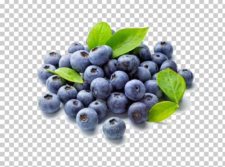 Fruit food shrub png. Blueberry clipart antioxidant