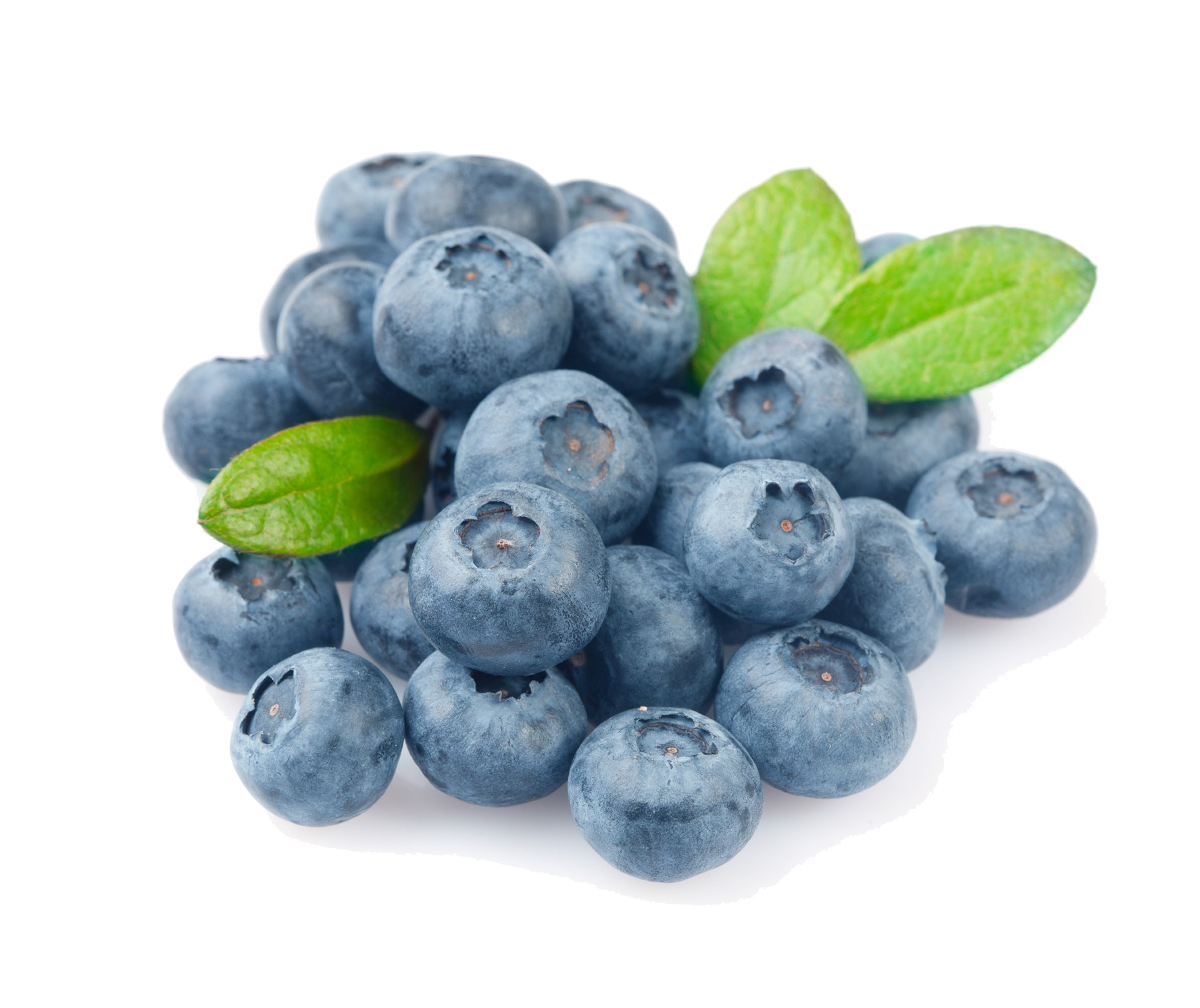 Blueberries clipart blue food. Blueberry png images transparent