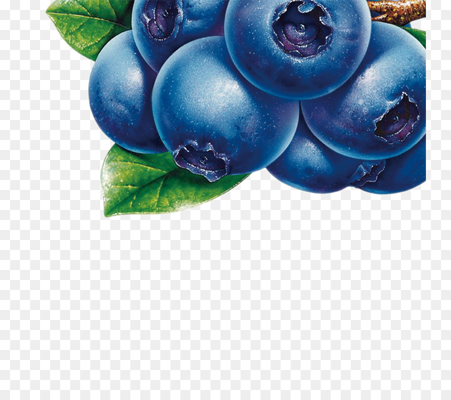 Juice bilberry fruit clip. Blueberry clipart blue food