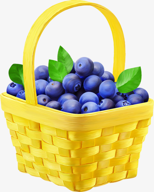 Of blueberries fruit blue. Blueberry clipart blueberry basket