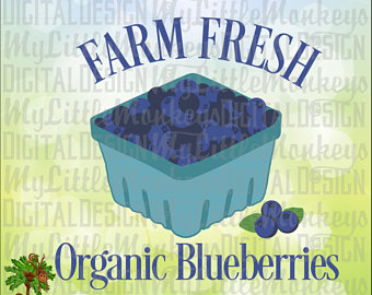 Svg etsy farm fresh. Blueberries clipart blueberry basket