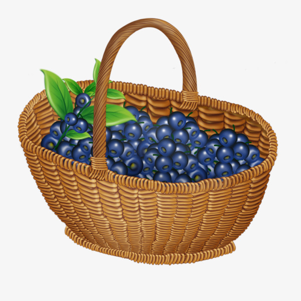Blueberry clipart blueberry basket. A of blueberries leaves