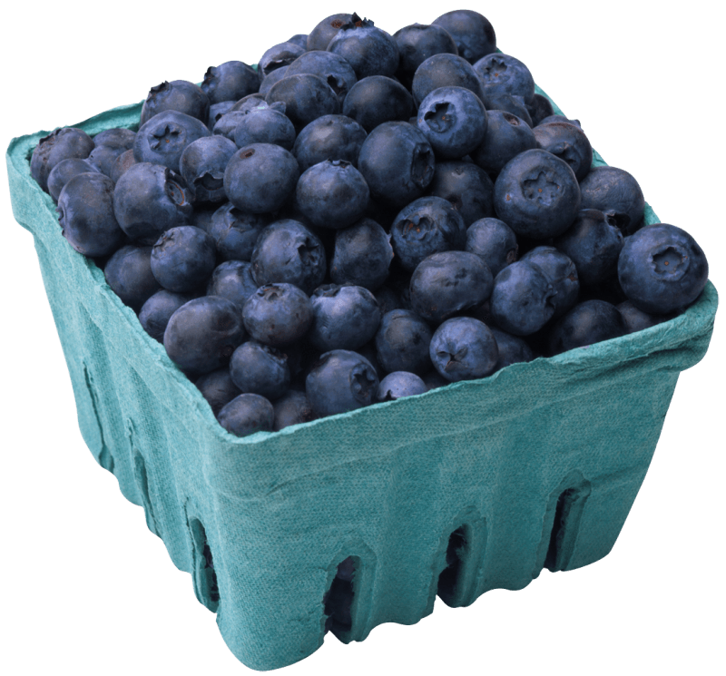 Cliparts zone . Blueberries clipart blueberry basket