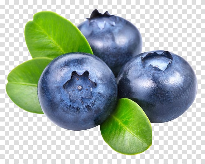 Smoothie frutti di bosco. Blueberries clipart blueberry fruit